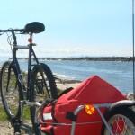 Maya Cycle bike trailer