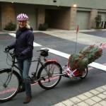 Maya Cycle carrying a Christmas tree