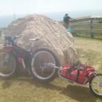 fat bike trailer
